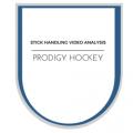 stick handling video analysis